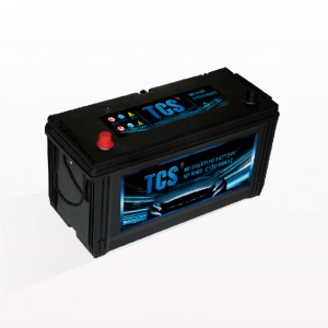 TCS car vehicle battery sealed maintenance free SMF 95E41R