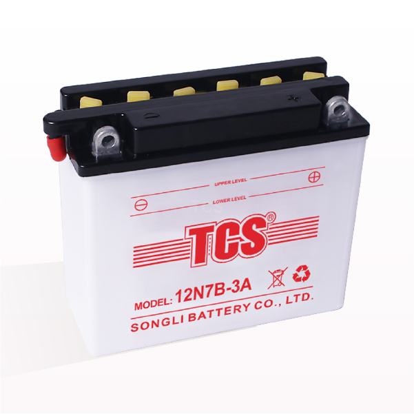China Gold Supplier for Tcs Vrla Battery -
