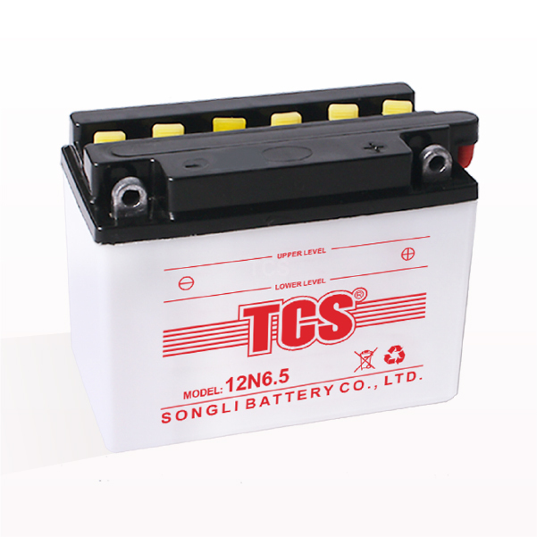 Professional Design Gel Battery -