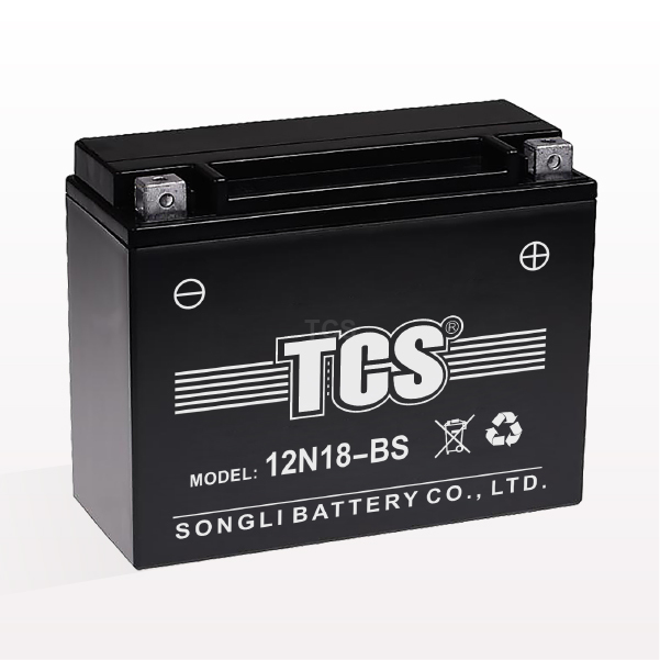 High Quality Dry Charged Battery -