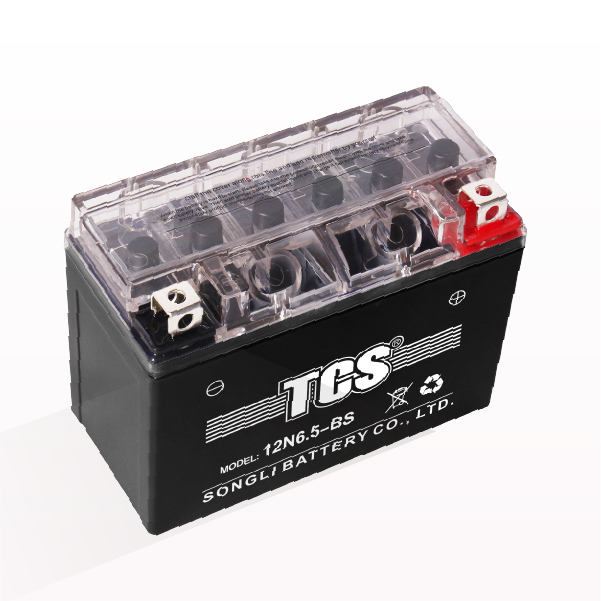 Top Quality Everstart Agm Power Sport Battery Es9bs -