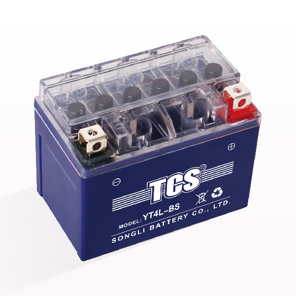 New Delivery for Tcs Storage Battery -