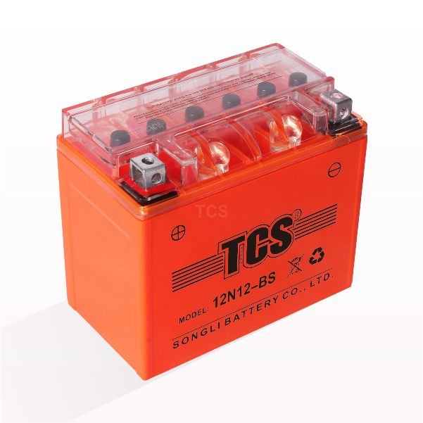 Personlized Products Tcs Battery - TCS 12N12-BS – SongLi
