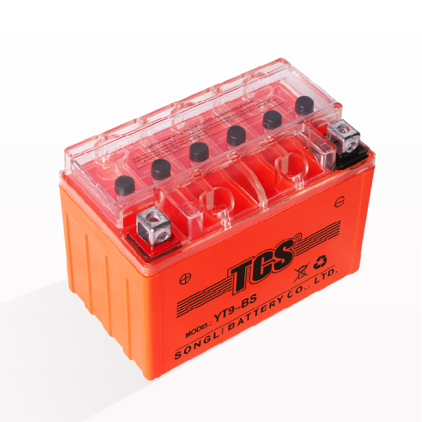 Ordinary Discount Tcs Vrla Agm Battery -