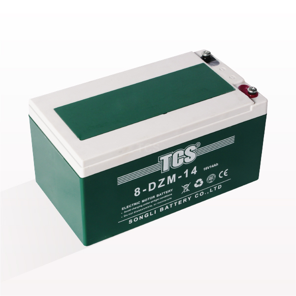 Wholesale Price China Yo Bike Battery -