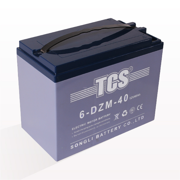 Best Price for Tcs Flooded Acid Battery -