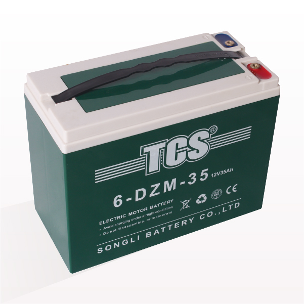 High reputation Cheap Electric Bike Batteries -