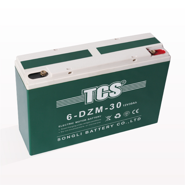 Factory Supply Electric Tricycle Battery -