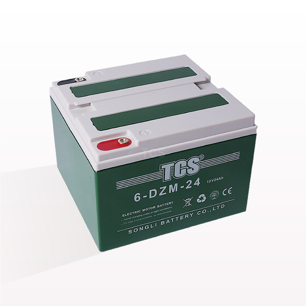 OEM/ODM Factory Yamaha Ebike Battery -