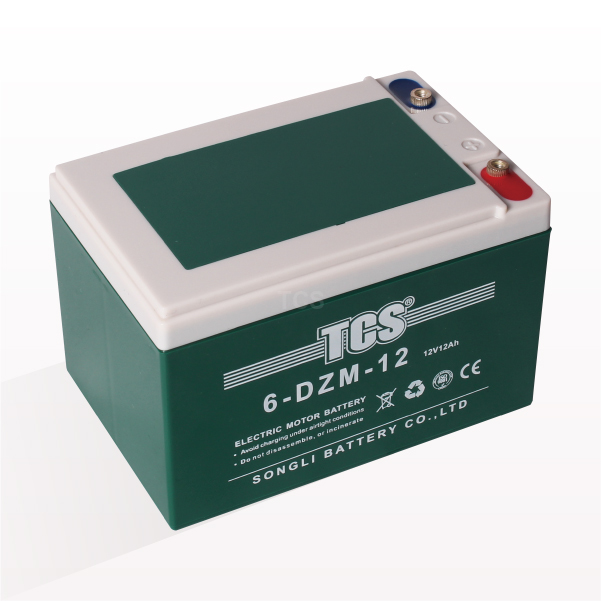 Manufactur standard Tcs Mantainance Free Vrla Battery -