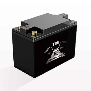 Starter battery for motorcycle 12V T2